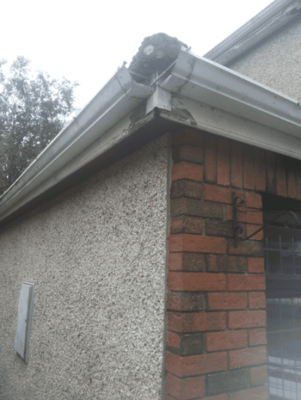 Gutter Replacement in Sheffield
