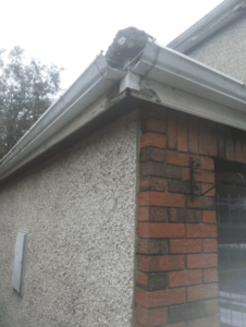 Guttering Needed Replacement in sheffield 226x300 - Recommended Roofers Sheffield