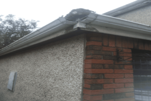 Fascia Soffit and Gutter Replacement Sheffield